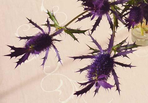 fabrics_flower